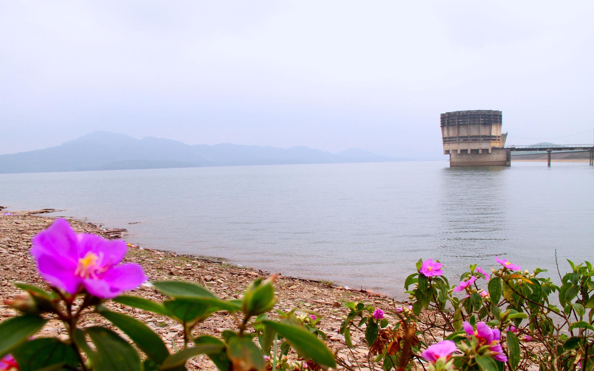 3 năm 'phá đá, đào sỏi' xây hồ Kẻ Gỗ Ho-ke-go-1_1494067353_VnEx
