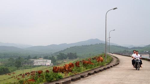 3 năm 'phá đá, đào sỏi' xây hồ Kẻ Gỗ Ho-ke-go-5_1494089007_VnEx_banner